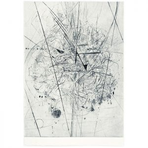 Jacqui Colley, 'Blush Small World 1', drypoint engraving, 500 x 350mm, ed.15, 2016