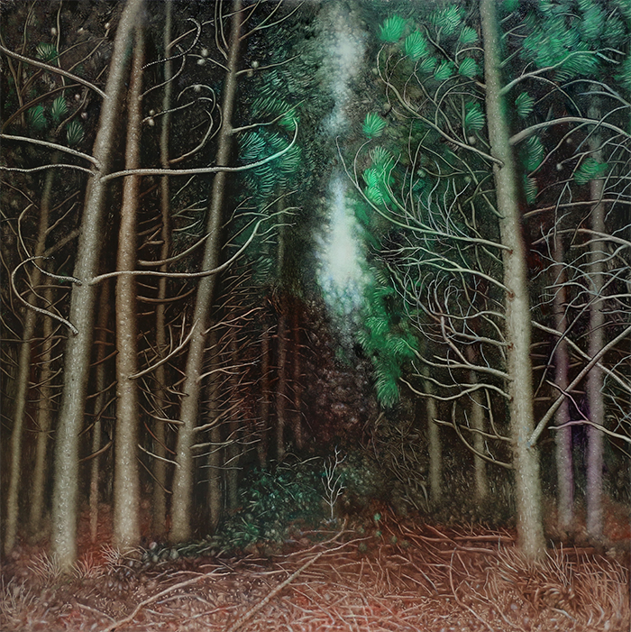 Thicket of Pines, Rebecca Harris, 2019 oil on board
