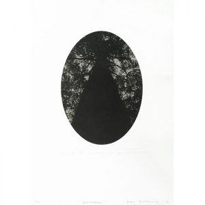 Inge Doesburg, 'Soliloquy I', photopolymer etching, 500 x 350m, ed.1,5 2016