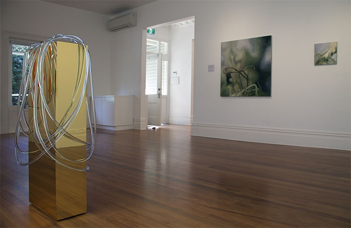 Installation of 'Liquid Gold' by Donna-Marie Patterson, 'Leptos' & 'Sanguin Light' by Viv Kepes